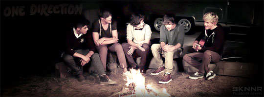 One Direction 3 Facebook Cover