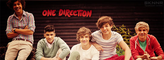 One Direction 5 Facebook Cover
